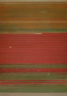 Andreas Gursky on the photograph that changed everything: 'It was pure intuition'   Art and design   The Guardian Andreas Gursky, Great Photographers, Art Market, The Guardian, Landscape Art, Intuition, Photo Art, Pure Products, Photography