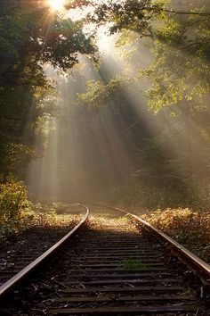 Waldemar Wienchol is an amateur photographer from Germany who captured the amazing shots of nature and landscape. Beautiful World, Beautiful Images, Pinturas Art Deco, Pretty Pictures, Cool Photos, Old Trains, All Nature, Train Tracks, Belle Photo