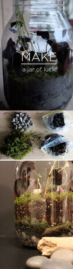 DIY - Make a Jar of Luck! #shamrocks #terrarium #DIY #StPatricksDay