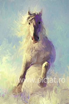 www.PICTAT.ro Pictura ulei pe panza picturi celebre Armasar alb alergand Tablou cu cal Abstract Horse Paintings for Sale Tablouri cu cai