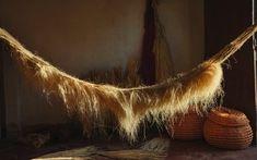 Halloween 2018: 9 ideias de decoração para o Dia das Bruxas - Casa Vogue   Ambientes Horses, Vogue, Arte Popular, Sunshine, Style, Halloween, Link, Design, Foliage Plants