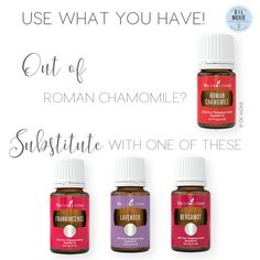 Out of Roman Chamomile? Try these!