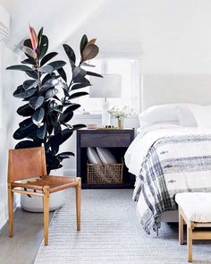 calming bedroom inspo
