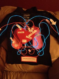 This was a 1st grade project. Using LED wiring 15ft of Red n blue. We used recycle cardboard from socks for the lungs, painted pinkish with light pink highlights, used recycled paper cups n cut the bottom for the 3D affect under the heart for chambers, used clear tubing for the valves which are hot glued to the paper cups. Labels parts n stitched the LED wiring on a black felt. Then applied to a black turtleneck so my son can wear on his body for his speech. The lights have 3 speeds.