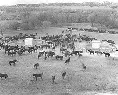 Fort Robinson History