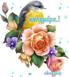 Όμορφη καλημέρα σε όλους με όμορφες eikones.top...! GIFs - eikones top Mom And Dad, Plants, Disney, Plant, Planting, Planets