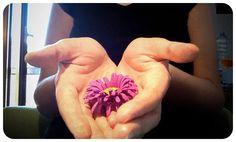 """Una nuova pagina su bouquetalternativi.it, """"IN REGALO"""". All'interno potrai trovare del materiale da poter scaricare gratuitamente!!!  #bouquetalternativi #unusualbouquet #bouquetsposa #bouquet #bouquetalternativo #bouquetparticolare #bouquetfattoamano #bouquetsposaparticolari #bouquetbottoni #fioredicarta #bouquetsposaparticolare #bouquetfioresingolo #fioribouquet #bouquetdifioridicarta #bouquetdicarta #tutorial #bouquetgioiello #bouquetmatrimoniocivile #bouquetoriginali…"""