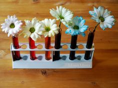 Regenbogenblumen - Experimentieren mit Farben - MontiMinis