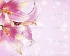 lindas imagens flores - Pesquisa Google