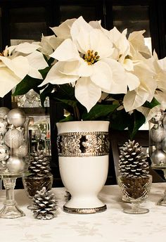 Frugal Winter table display. Love that it can be used all through Christmas until Spring!