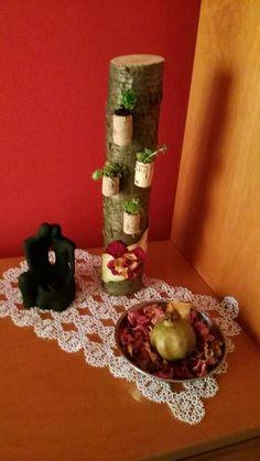 Cocccio in legno con vasetti di sughero con piantine grasse