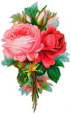 """The perfect bouquet for a partner of many years on Valentines Day - mature red rose blooms say """"I love you"""" to a long term relationship, while mature pink roses and green foliage compliment with """"pure love"""", imagination and fascination."""