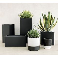 """<span class=""""copyHeader"""">urban landscape.</span> Black planter squares up sleek and modern. Protected for indoor and outdoor settings, matte-finished galvanized steel plays up refined industrial to dramatic effect.<br /><br /><NEWTAG/><ul><li>Powdercoated galvanized steel</li><li>Drainage holes</li><li>Wipe with a soft dry or slightly damp cloth</li><li>Protected for indoor or outdoor use</li><li>Made in Vietnam</li></ul><br />"""