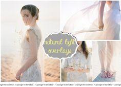 Natural Sun Light Photoshop Overlays: Backlight Photo by ElyseBear