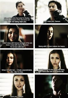 I hated them as a couple b/c of her dating Stefan first & all that shit but Damon really did ❤️ her tho but lol so did Stefan Vampire Diaries Damon, Vampire Dairies, Vampire Diaries The Originals, Series Movies, Movies And Tv Shows, Mystic Falls, Delena, The Vamps, Best Tv