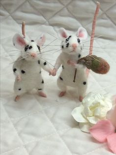 Mice by Suzanne x
