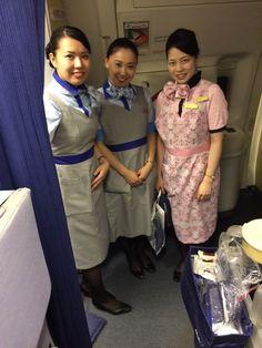 Commercial Aircraft, Flight Attendant, Saree, Sari, Saris, Sari Dress, Half Saree