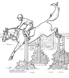 ausmalbilder pferde springreiten - ausmalbilder pferde kostenlos zum ausdrucken | ausmalbilder