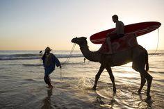 Marroko: Taghazout ist ein Paradies fernab der Touri-Zentren