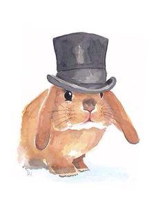 Sr. Conejo