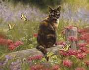 Domestic Shorthair Cat Painting Prints - Lady Print by Lucie Bilodeau