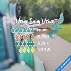 Drive Baby Drive - Essential Oil Diffuser Blend