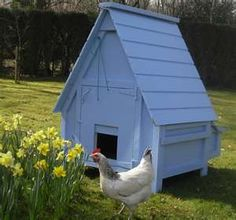This is the coop I want.. except with a run and I want it red with white trim and black roof.. Someone build this for me?