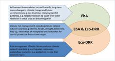 Helping nature help us: Transforming disaster risk reduction through ecosystem management