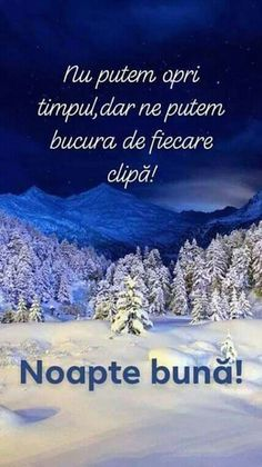 We can not stop the time, but we can enjoy every moment! Motto, Good Night, In This Moment, Life, Italia, Nighty Night, Mottos, Good Night Wishes