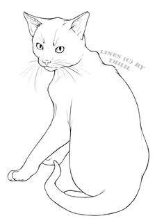 free cat line drawing - Google Search