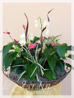 Florist Palm Beach Gardens   The Flowers Are Very Beautiful, Here We  Provide A Collections Of Various Pictures Of Beautiful Flowers, Charming,  ...