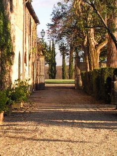 Fall season - picture of La Selva Villa Mansion gate and entrance to the ornamental garden from inside it looking out.  You can see the meadow and circle of 6 cypress trees in the distance.  La Selva Vacation Villas for your dream vacation.