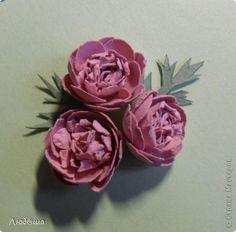 Мастер-класс Бумагопластика Как я делаю пионы и розы Бумага Клей фото 16