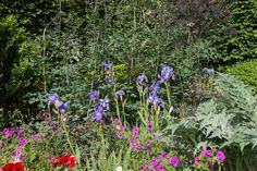 Linklaters Garden for Maggie's by garden designer Darren Hawkes
