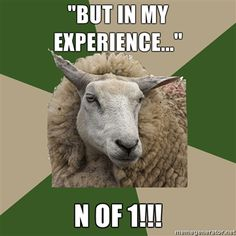 """""""Sociology Student Sheep"""": Humor for Sociologists and Those Who Love Them (click thru for analysis)"""
