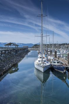 Comox Harbour by Mike Shingen Price - Photo 70889569 / 500px