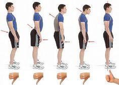 4 ejercicios simples para mejorar la postura. - Vida Lúcida