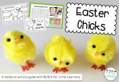 Easter Chicks - a hands on activity packet with printables | Little Lifelong Learners