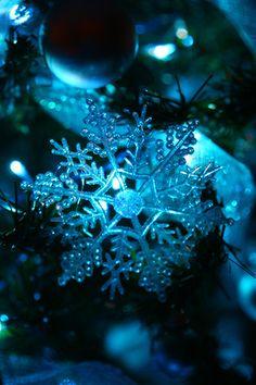 blue christmas by eggplant, via Flickr