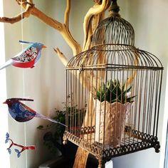Porta Venezia in Design free birds @ mint market #milandesignweek