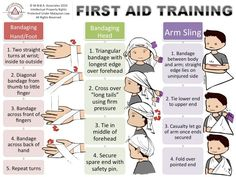 Pro Three: First Aid | DES 516