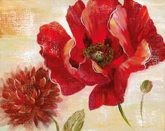 Passion for Poppies II