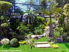 1000 Images About Tropical Gardens On Pinterest