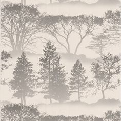 Wallpaper. Forest trees.