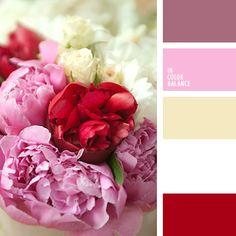 amarillo pastel, amarillo y blanco, blanco y amarillo, burdeos, burdeos y rosado, color amarillo, color escarlata, colores de las peonías, combinación de colores para boda, rojo, selección de colores para una boda, tonos rosados, tonos rosados y amarillos.