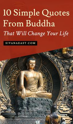 10 Simple Quotes From Buddha That Will Change Your Life