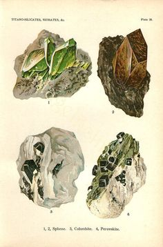Vintage 1911 Minerals Print Antique Gems Precious Stones print gemstones print, bookplate art print, minerals wall print wall art ($14.00) - Svpply