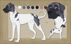 Registered Name:RSK Dragon's Reach Call Name:Noble Gender:Unaltered Female Age:3 years Height:Tall (for female) Weight:Average Breed:Doberman Pinscher Coat...