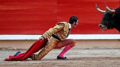 An Intense stare-down: Bullfighter Juan Jose Padilla kneels down in front of a bull during the last bullfight of the San Fermin festival in Pamplona, Spain. I don't know about you but, I'm rooting for the bull! Must-See Photos on MSN Photos Matador Costume, Running Of The Bulls, The Sun Also Rises, Man Vs, Sports Photos, Street Fighter, Pictures Images, Cool Photos, Spanish