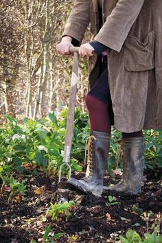 love Sarah Raven's wellies